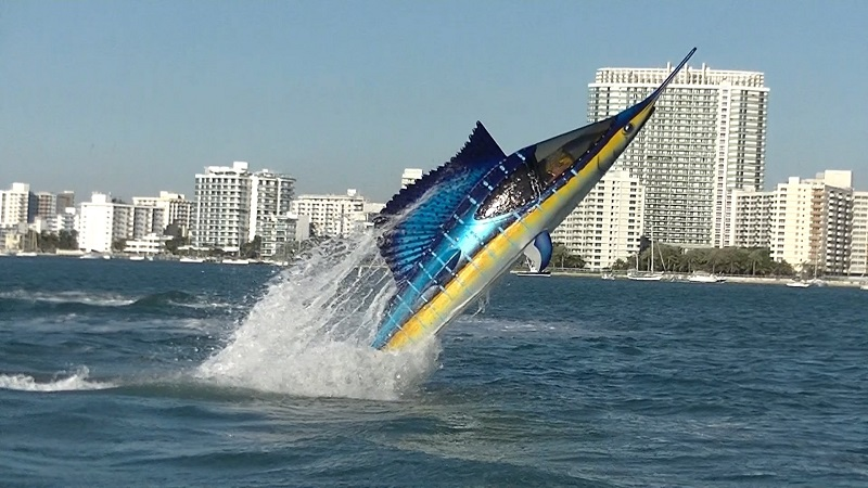 SeaBreacher Sailfish