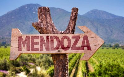 Taste some wine in Mendoza