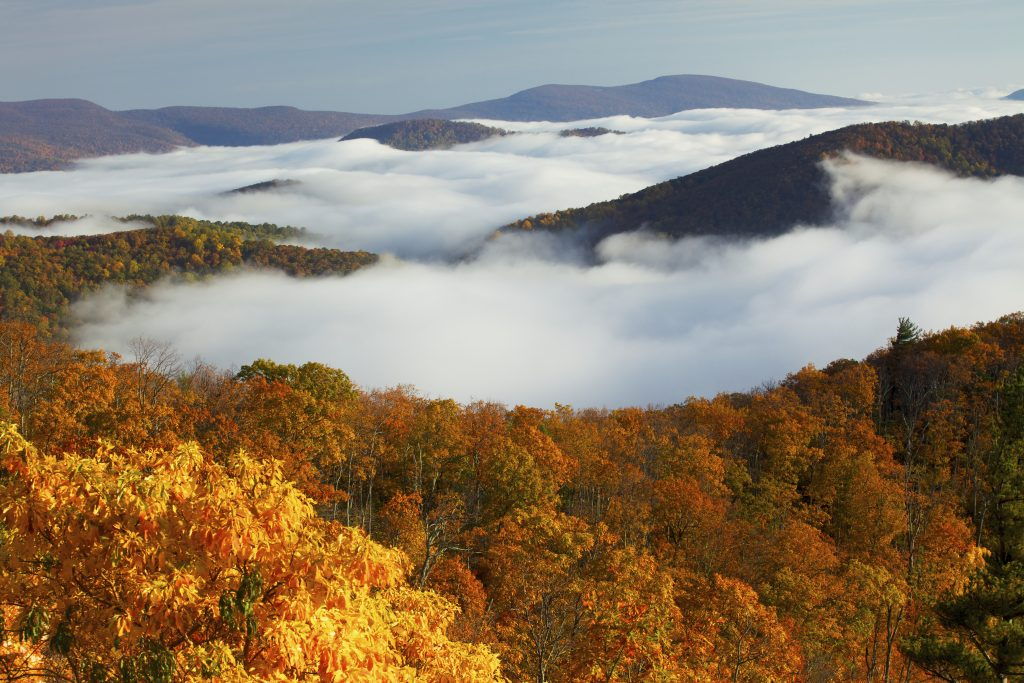 Sensational Shenandoah: Travelling in Luray and the Shenandoah Valley