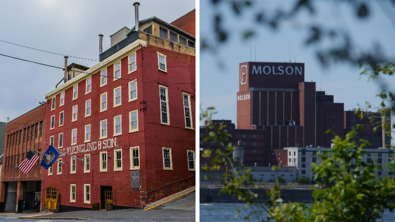 Yuengling Brewery and Molson Brewing
